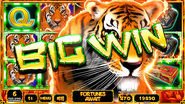 Thumb milin tigerbigwin web
