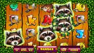 Thumb trashpanda pandawilds web