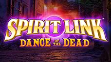 Topart spirit link dd