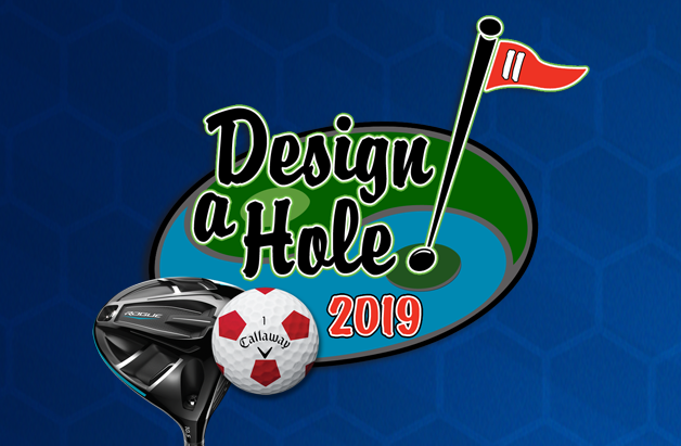 Design-a-Hole extended!