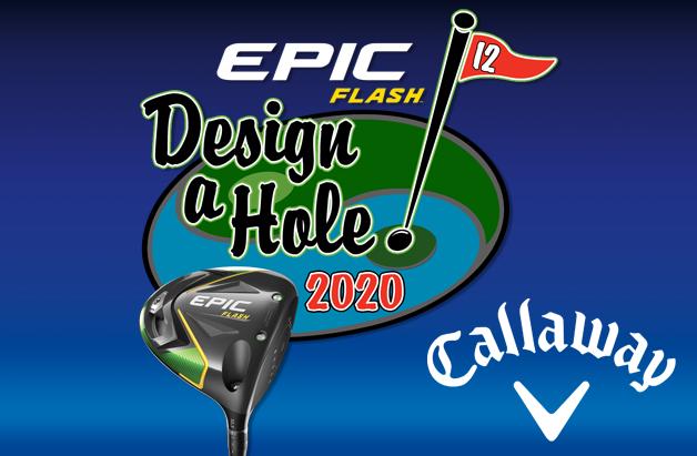 Epic Flash Design-a-Hole 2020